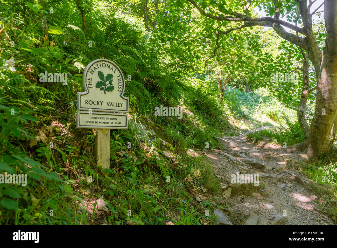 Abundant vegetation in Rocky Valley with National Trust sign summer 2018, North Cornwall, Cornwall, England, UK - Stock Image
