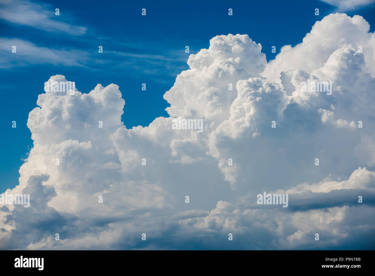 Building cumulus clouds, thunderstorms, North America,by Bruce Montagne/Dembinsky Photo Assoc - Stock Image