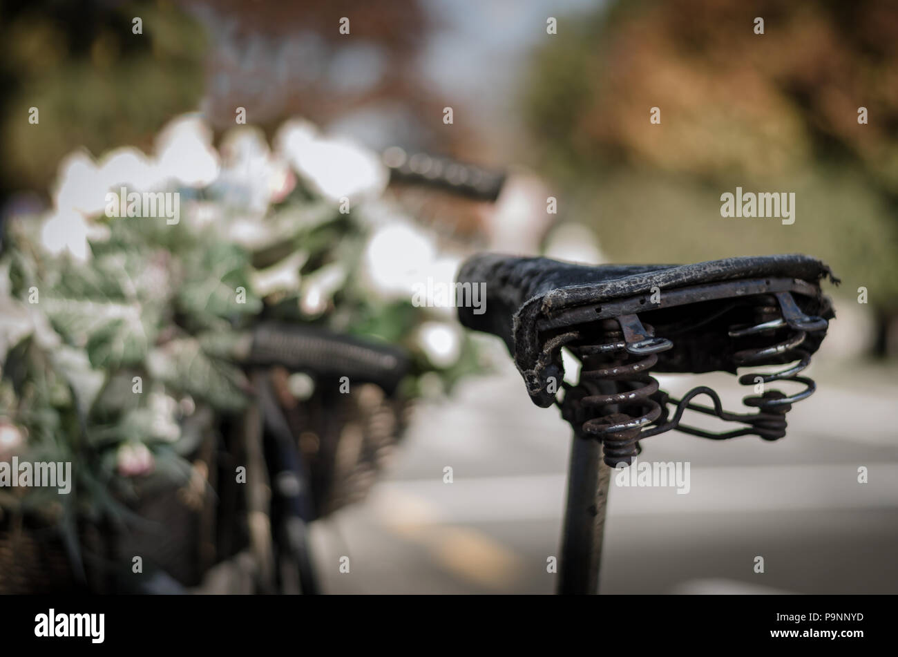 Close up of an old bicycle focussing on the seat, with a basket of flowers and the handlebars blurred in the background. - Stock Image