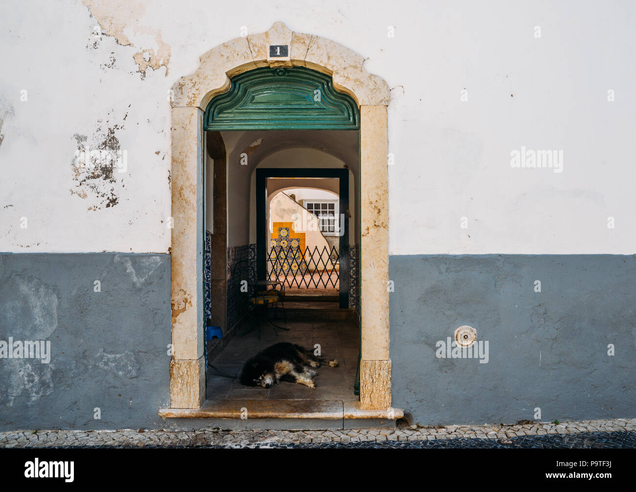 Lazy dog at rustic doorway in Faro, Portugal - Stock Image