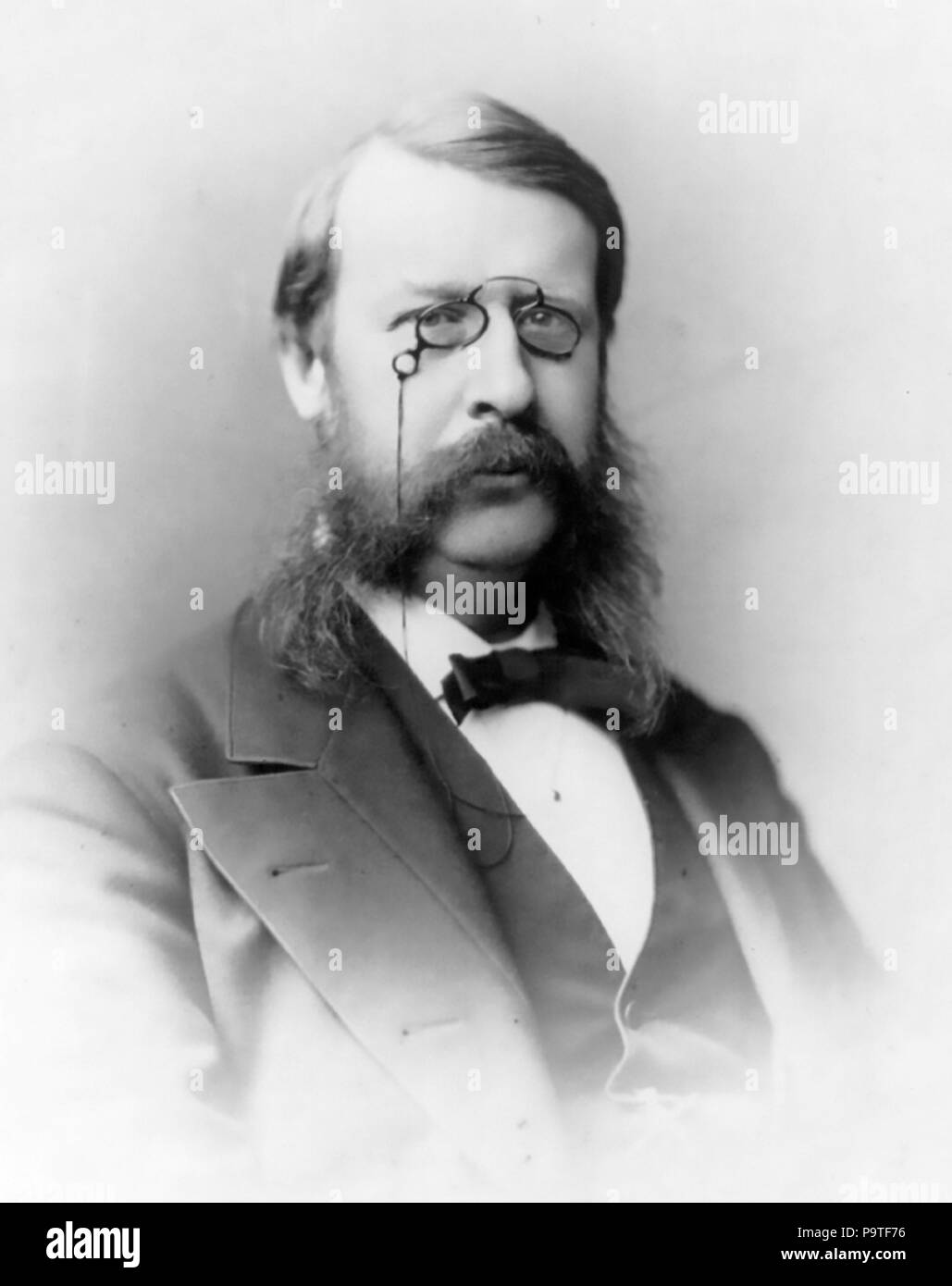 GEORGE FREDERICK BARKER (1835-1910  American scientist and physician. Photo: Frederick Gutekunst Stock Photo