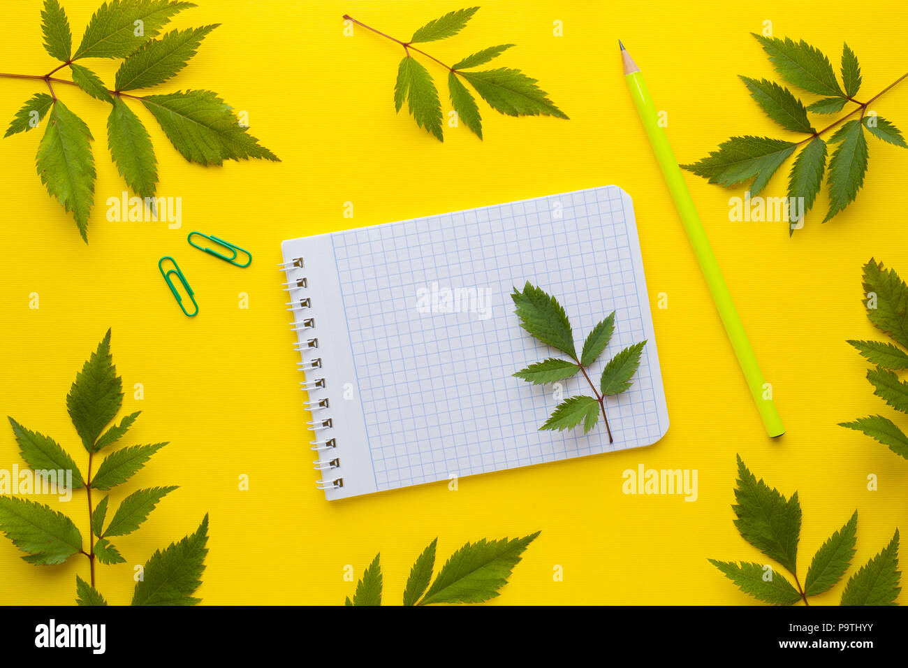 business concept notebook and stationery on a yellow background