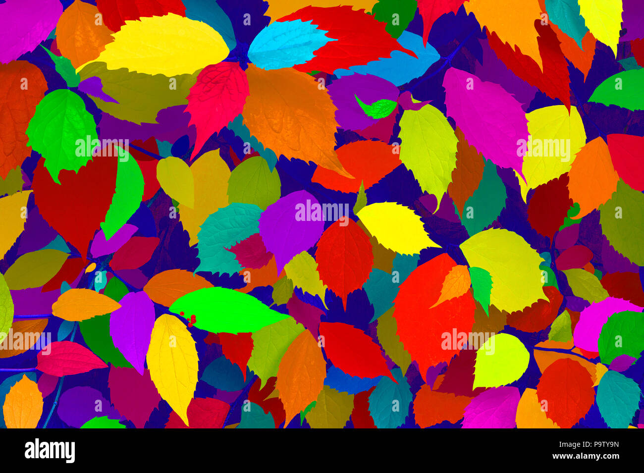 COLOURFUL HAPPY LEAVES - Stock Image
