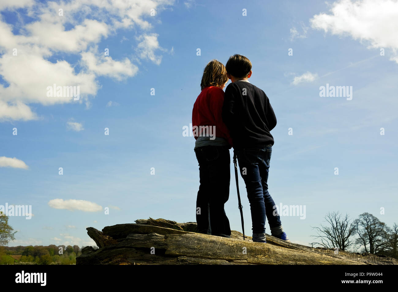 low angle rear portrait shot of two ten year old boys with dog lead standing on a fallen tree watching and discussing something in the distance - Stock Image