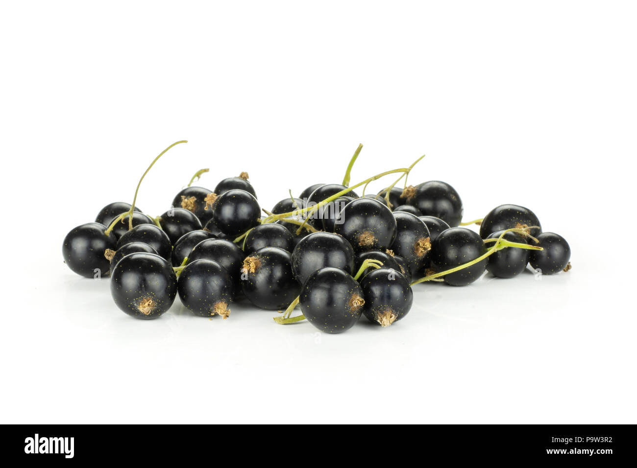 Lot of whole fresh black currant berry ben gairn variety set isolated on white - Stock Image