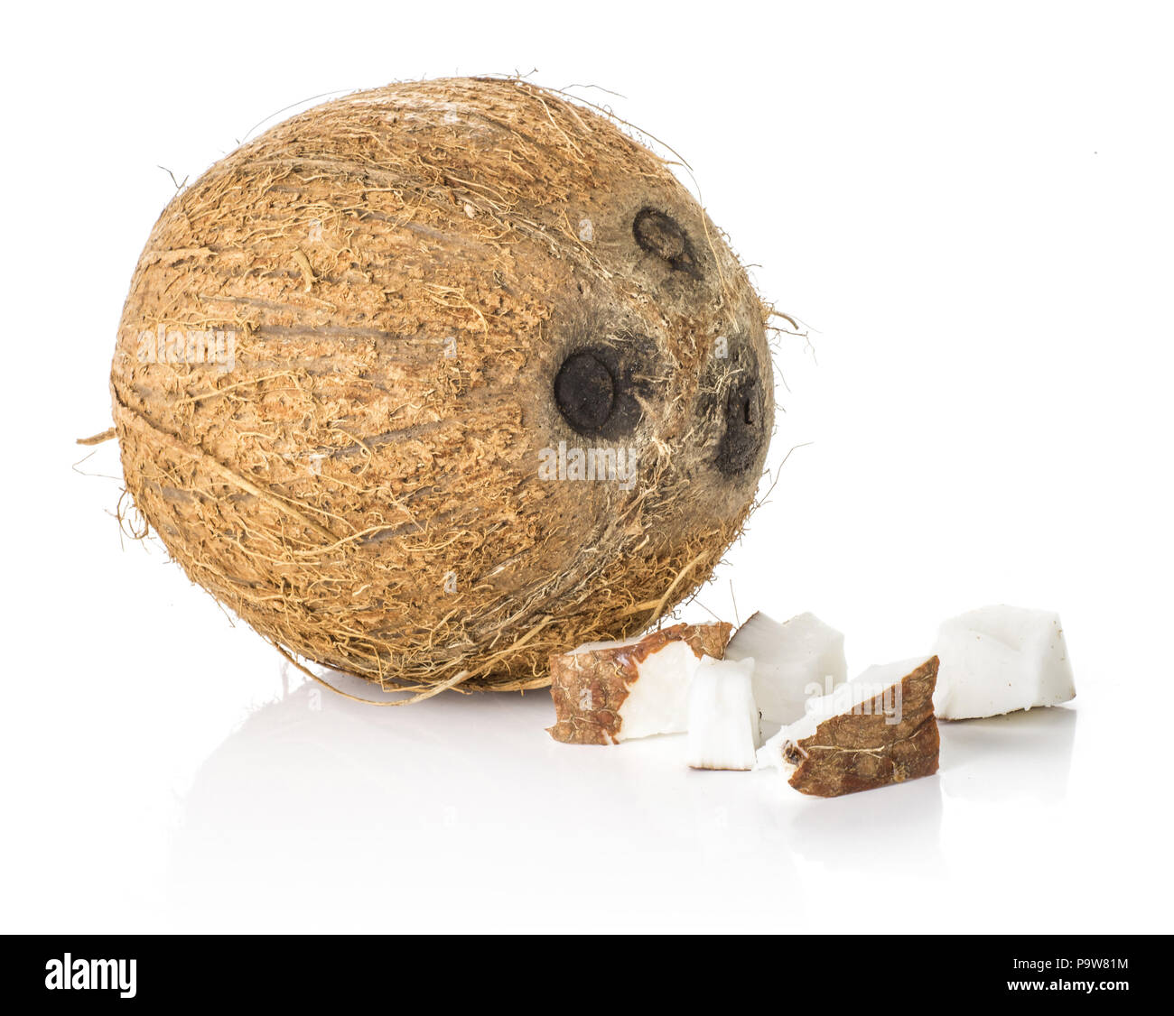 One coconut with three pieces isolated on white background brown fibrous shell with milk meat - Stock Image