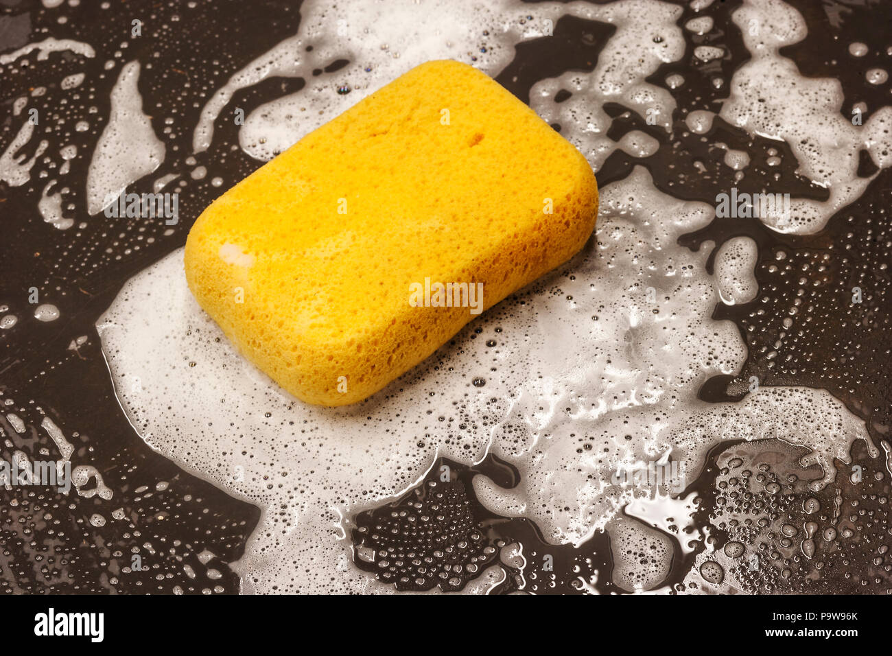 The life of a sponge sitting on a clean surface surrounded by soap suds - Stock Image