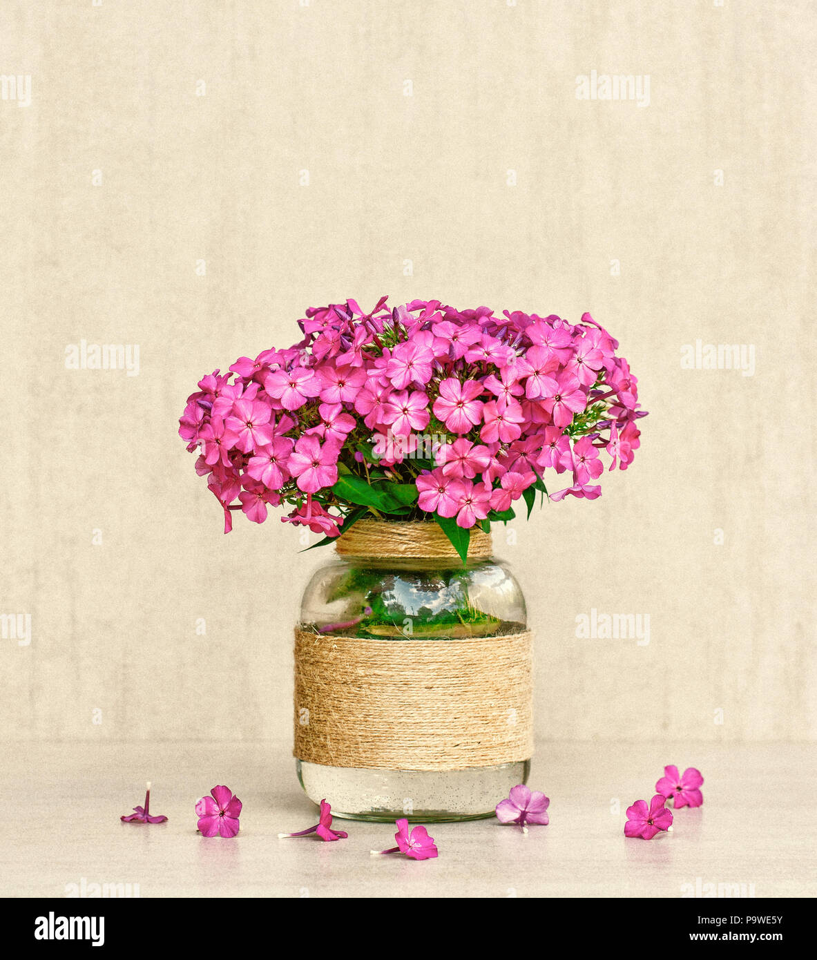 Flower Bouquet Of Phlox In Vase Homemade Closeup On Gray Background