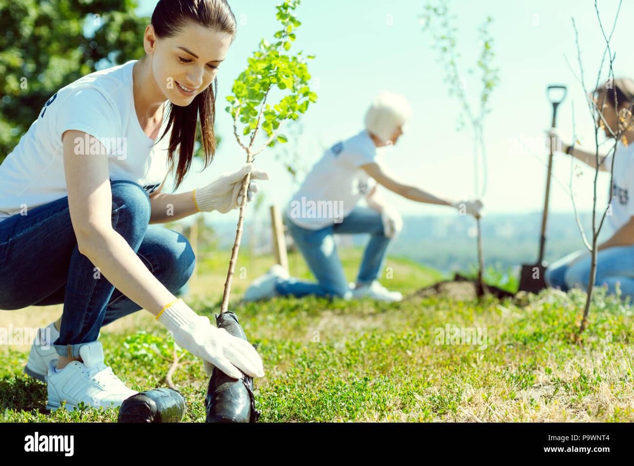 Cheerful brunette woman looking at plant - Stock Image