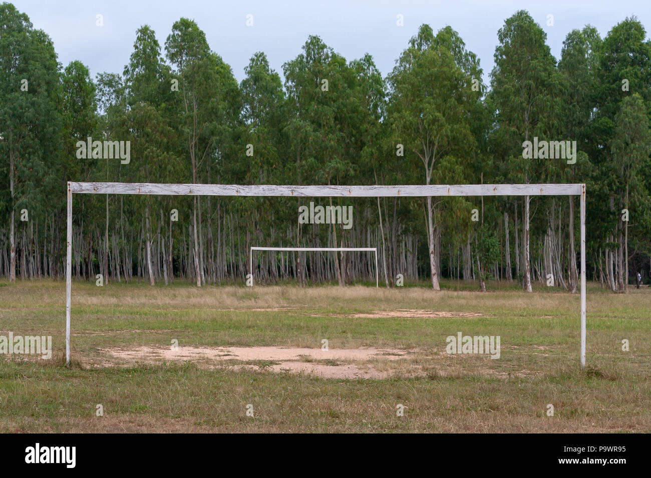 Two soccer goals, wooden frames without nets on green grass, front and middle ground, eucalyptus trees forest in background, Luque, Paraguay Stock Photo