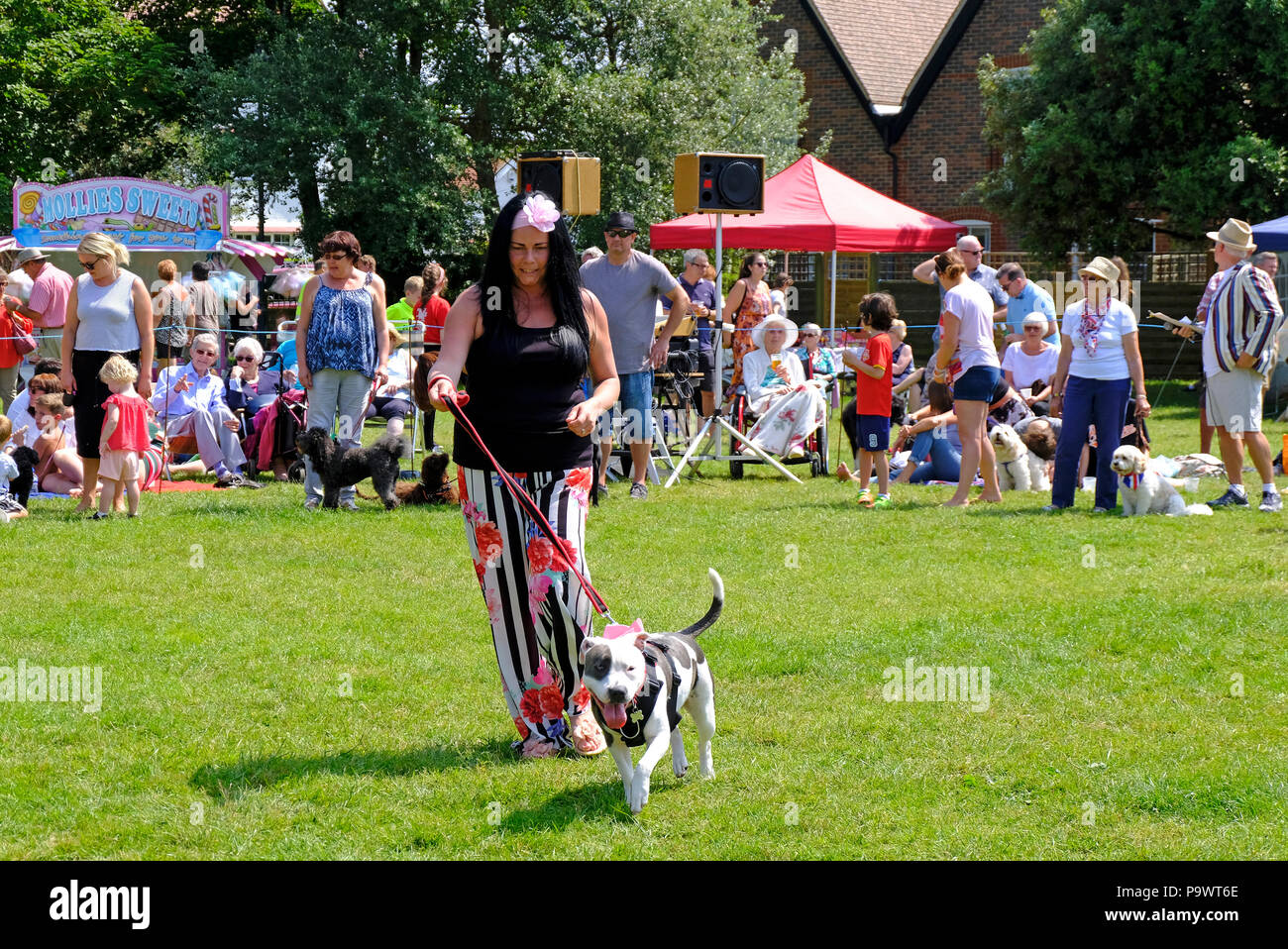 East Preston, West Sussex, UK. Fun dog show held on village green - colourfully dressed woman showing her pet Staffie - Stock Image