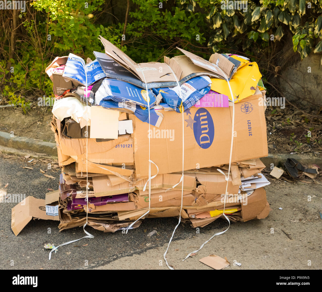 Cardboard boxes flattened and stacked for recycling collection, England UK - Stock Image