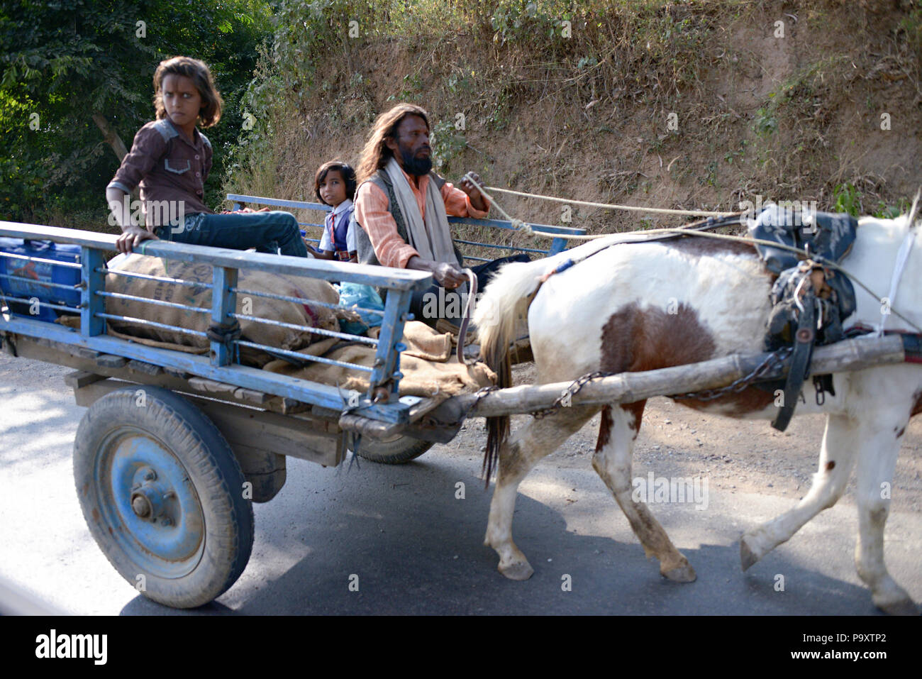 Lifestyle street scenes from a moving car, travelling from Jaipur to Bandhavgarh National Park, India - Stock Image