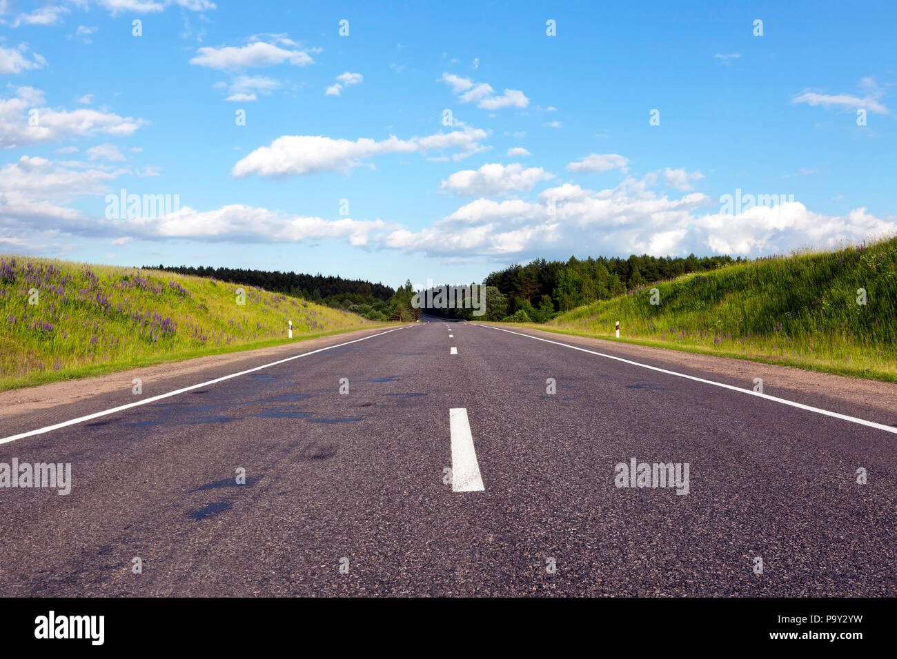 a wide road of asphalt built through a forest with different trees, sunny weather with a blue sky Stock Photo