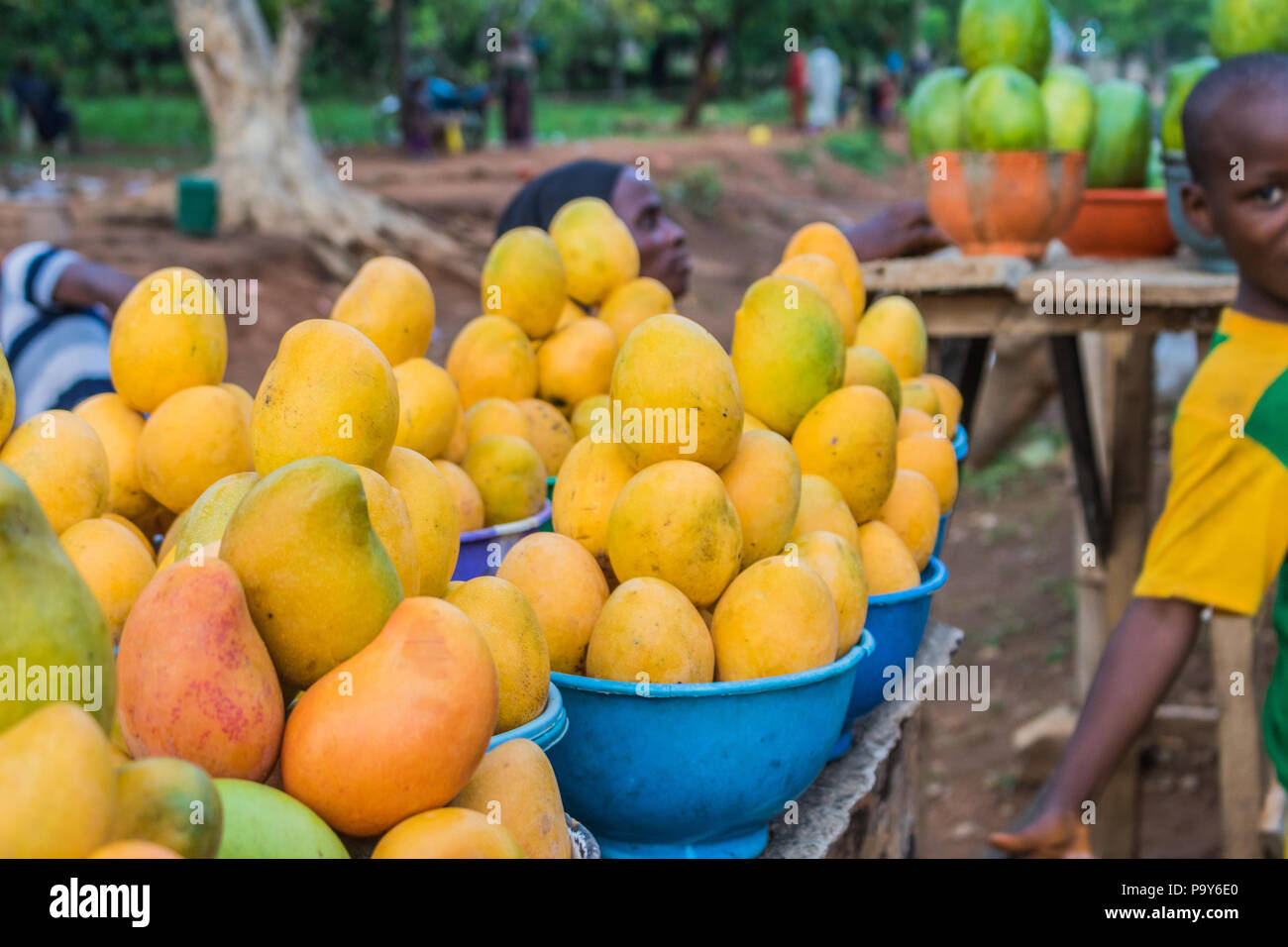 Yellow And Green African Mango Fruits Arranged In Small Portions For Sale In A Market Stock Photo Alamy