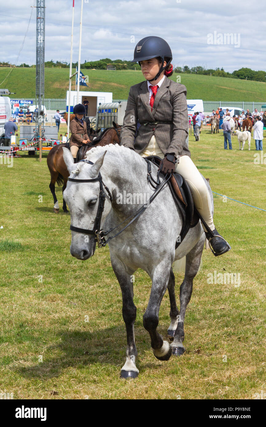 rural cattle and horse show and livestock competition in west cork, Ireland - Stock Image