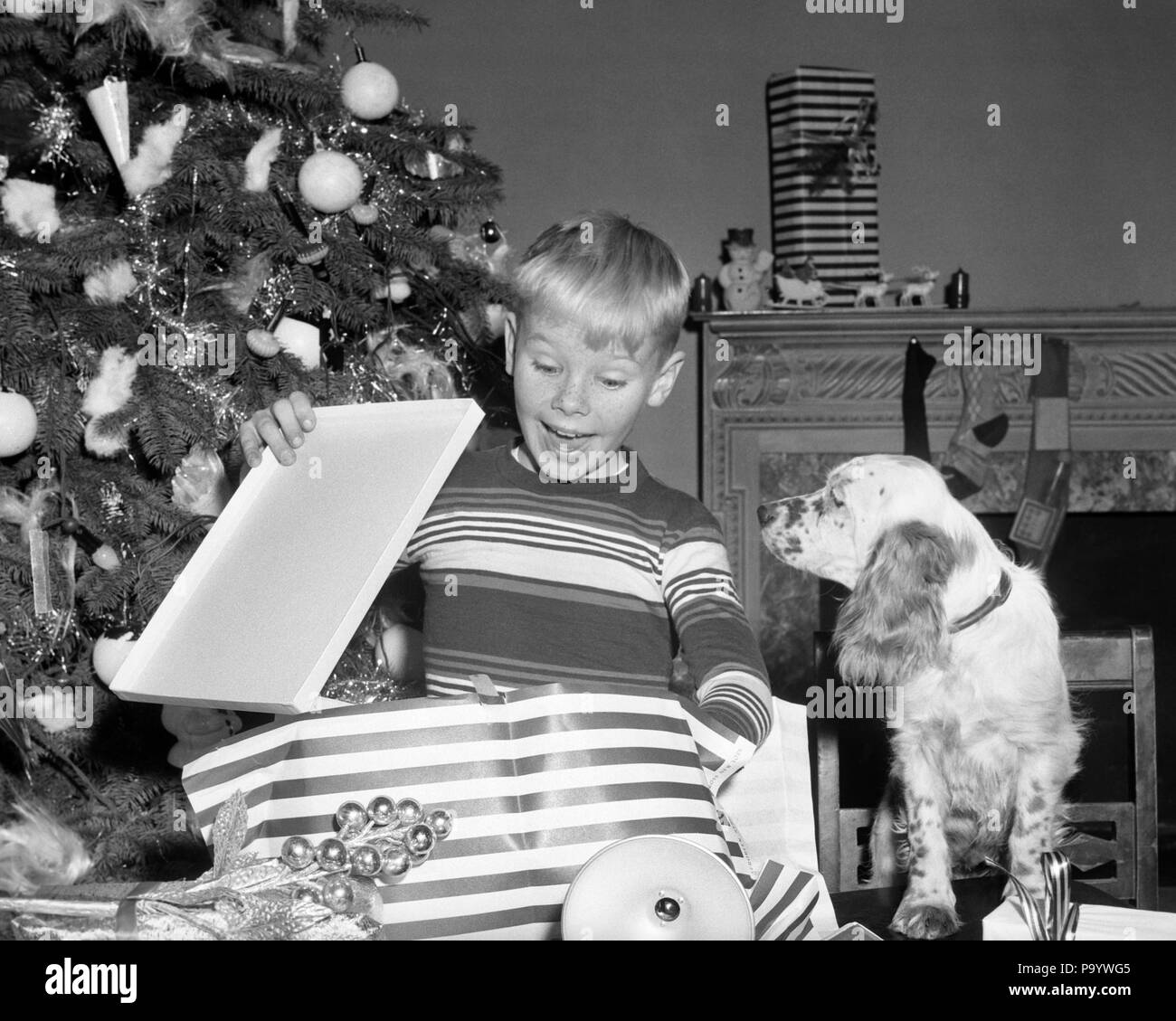 1950s SURPRISED BOY OPENING CHRISTMAS PRESENT WITH DOG WATCHING BY TREE - x2069 DEB001 HARS MALES EXPRESSIONS B&W DREAMS HAPPINESS MAMMALS CANINES EXCITEMENT DELIGHTED DECEMBER POOCH DECEMBER 25 DEB001 CANINE EMOTION EMOTIONAL EMOTIONS JUVENILES MAMMAL BLACK AND WHITE CAUCASIAN ETHNICITY OLD FASHIONED - Stock Image