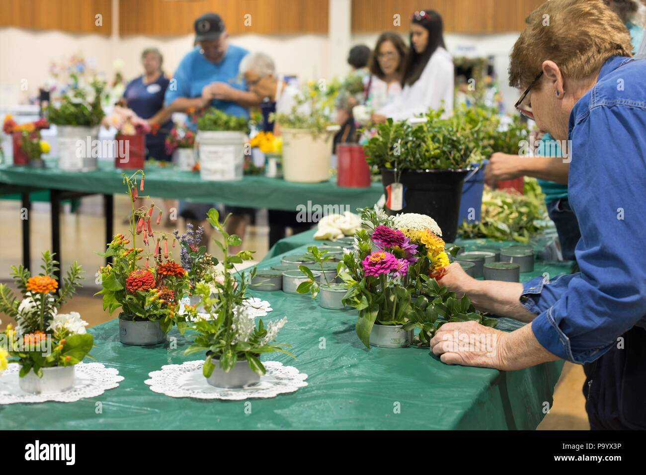 A senior woman working on a flower arrangement, at the Lane County Fair in Eugene, Oregon, USA. - Stock Image