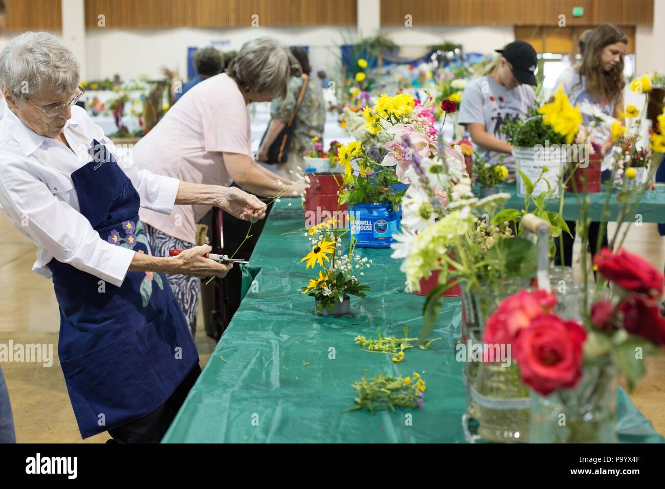 A senior woman working on a flower arrangement, at the Lane County Fair in Eugene, Oregon, USA. Stock Photo