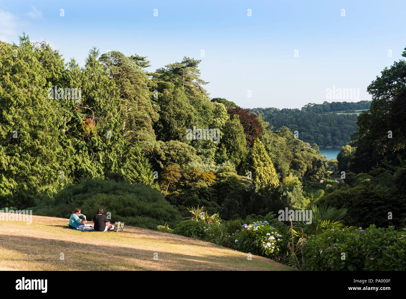 People enjoying a picnic on the lawn at Trebah Garden in Cornwall. - Stock Image
