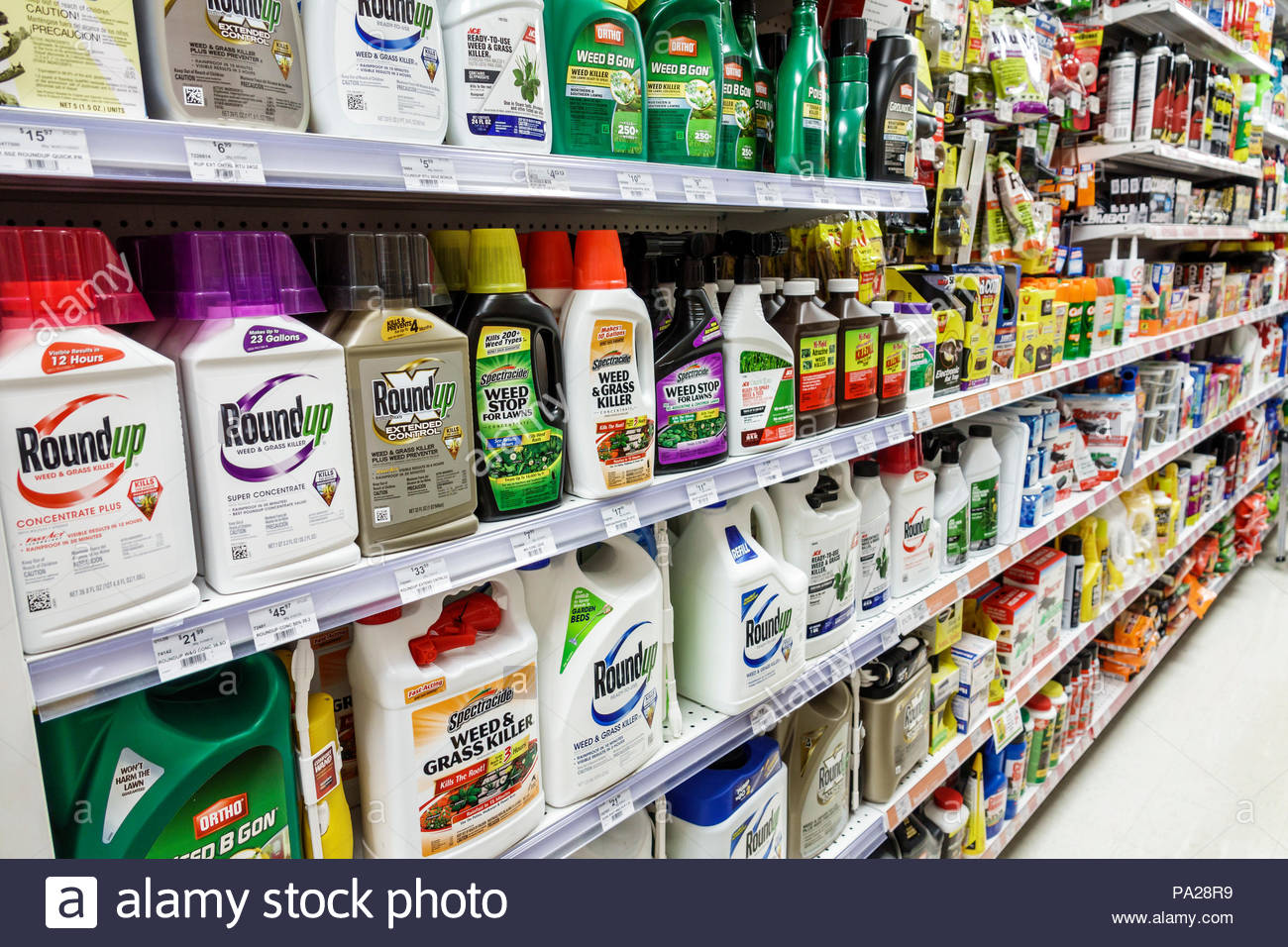 Orlando Florida Ace Hardware pesticides insecticides poisons insect sprays weed killer Roundup brand shelves display sale interior - Stock Image