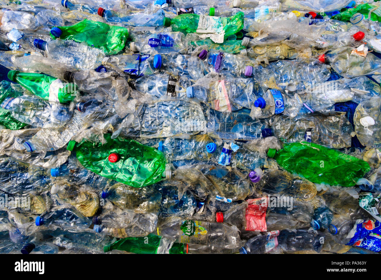 All kinds of consumer plastics stuck together to show the sheer amount and range of disregarded plastics found in the oceans. Pet bottles, others item - Stock Image