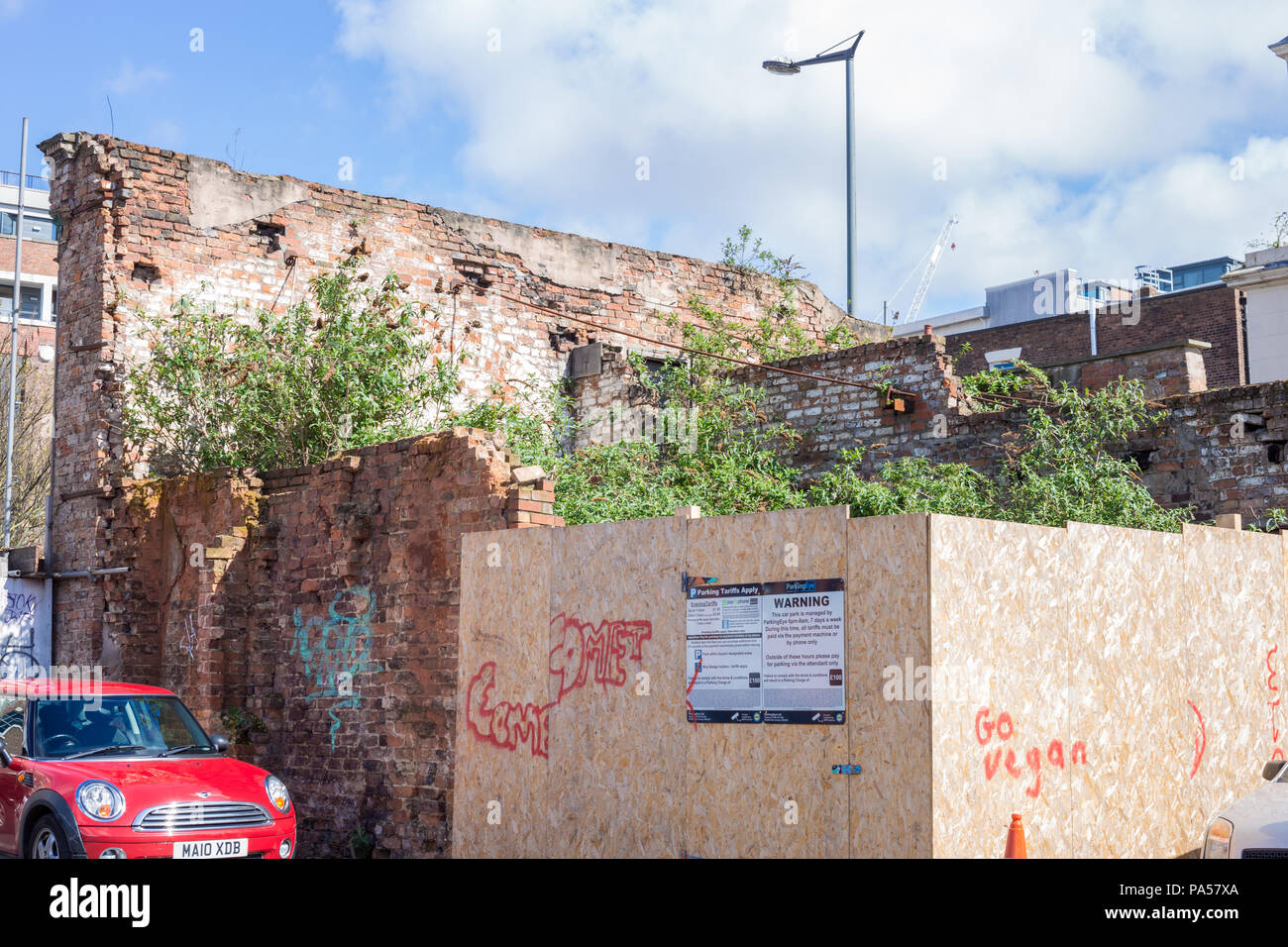 Overgrown plot, Liverpool, showing urban decay and ruined building - Stock Image