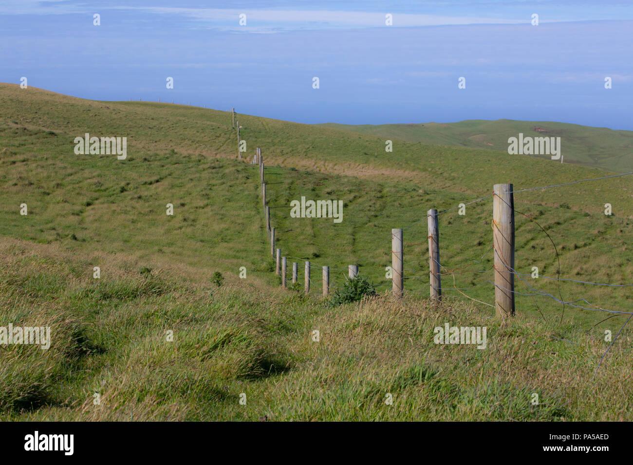 Farm fence on Pitt Island, Chatham Islands - Stock Image