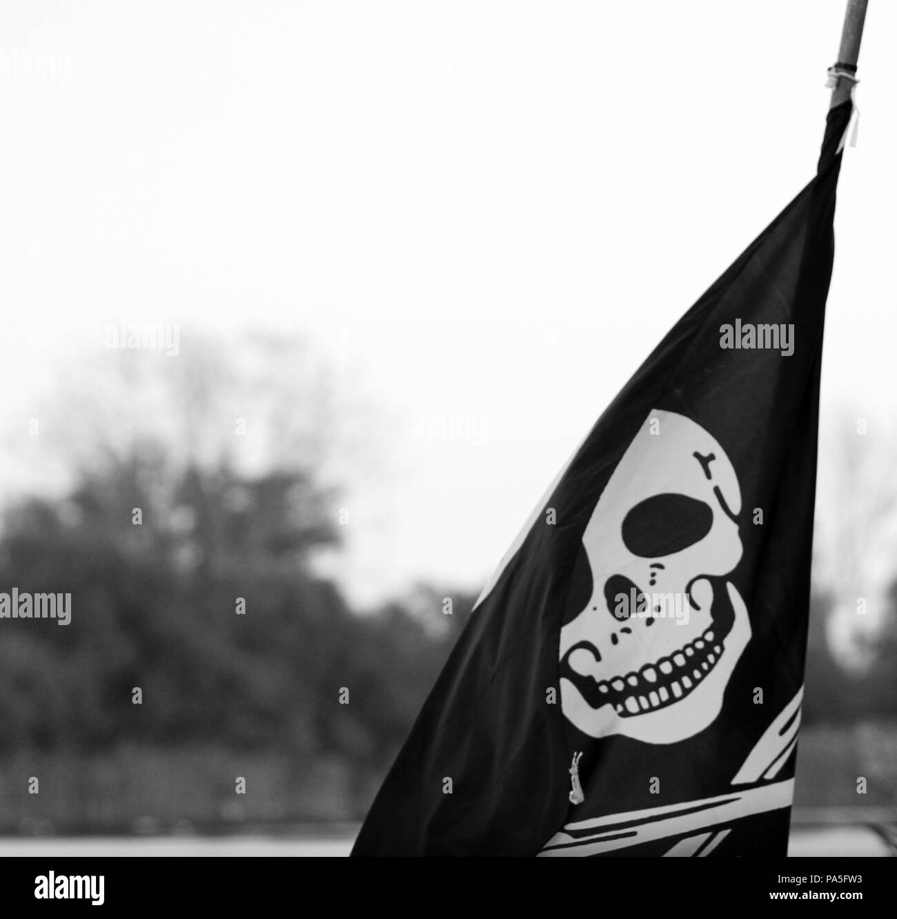 The pirates flag, the jolly roger, waving on natural background - Stock Image