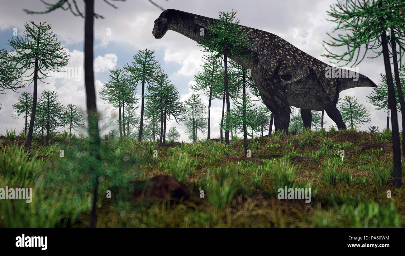 3d rendering of the titanosaurus Stock Photo