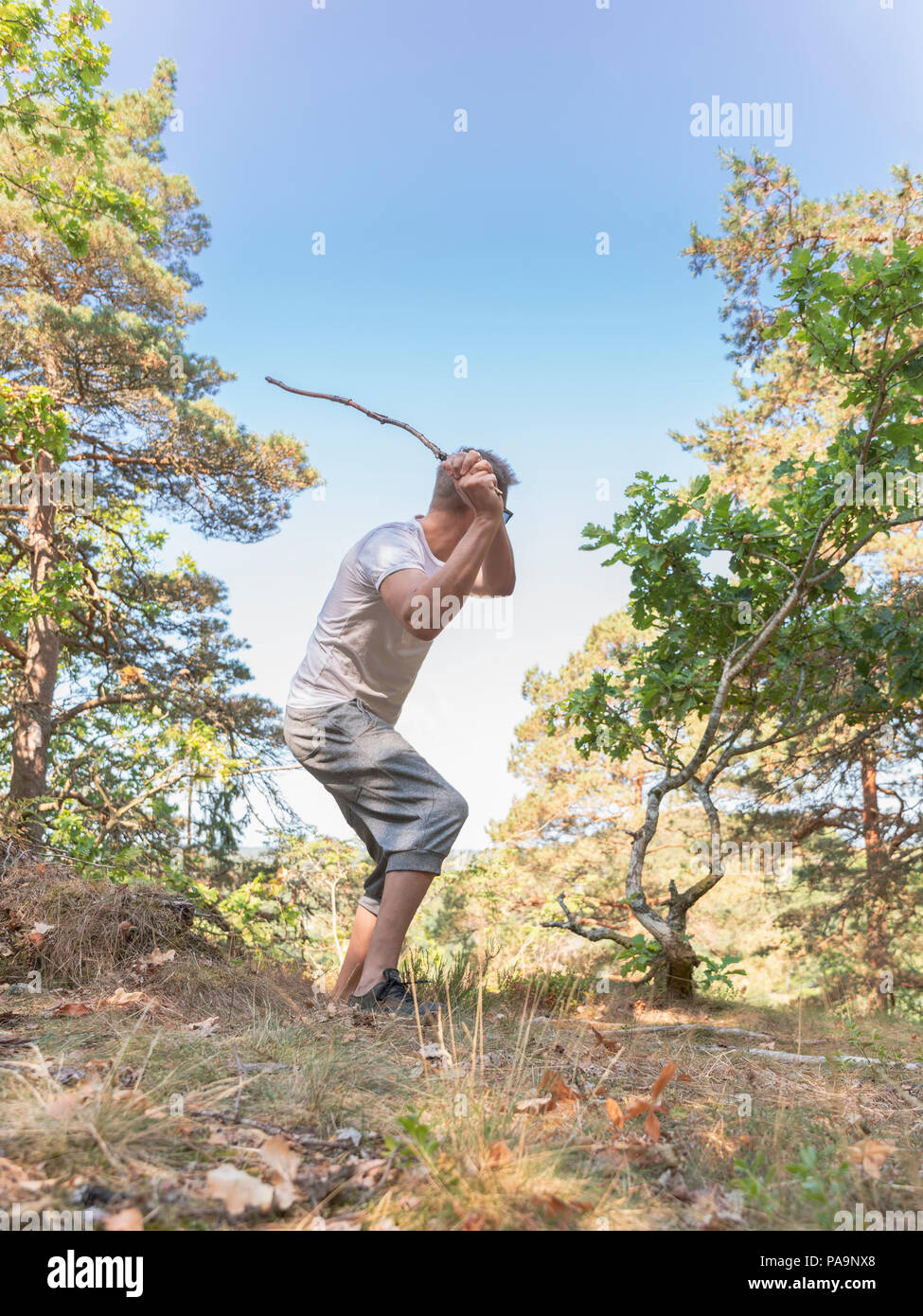 Adult caucasian man batting with wooden stick through clearing in forest - Stock Image