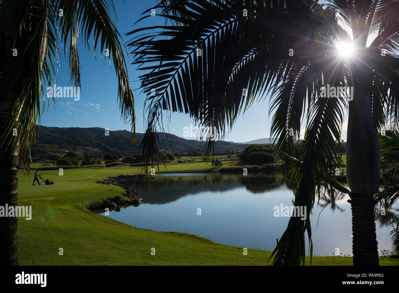 Tropical golf - Stock Image