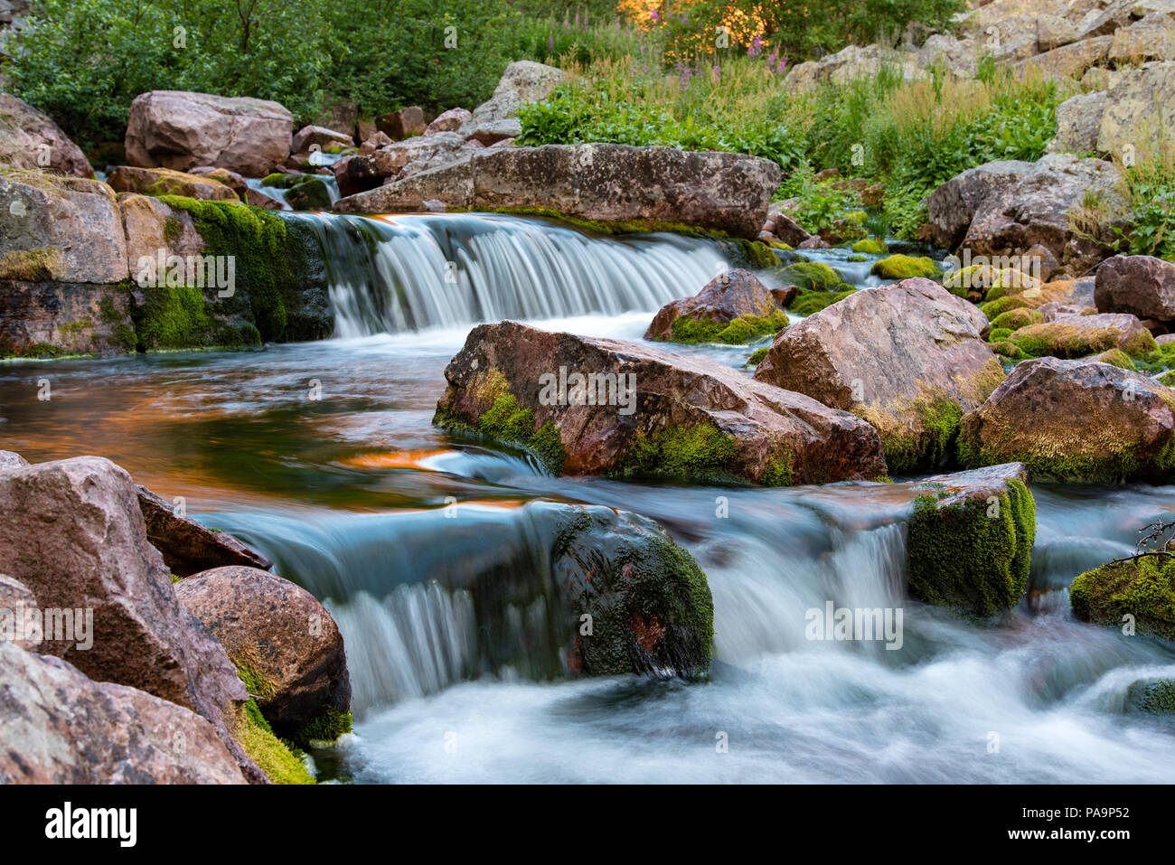 stream with white water at fulufjallet nature reserve in sweden - Stock Image