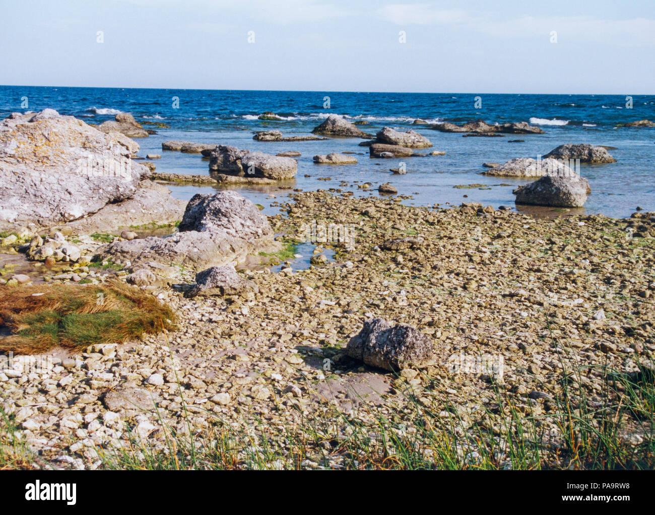 GOTLAND FÅRÖ Beach with limestone and Baltic sea - Stock Image