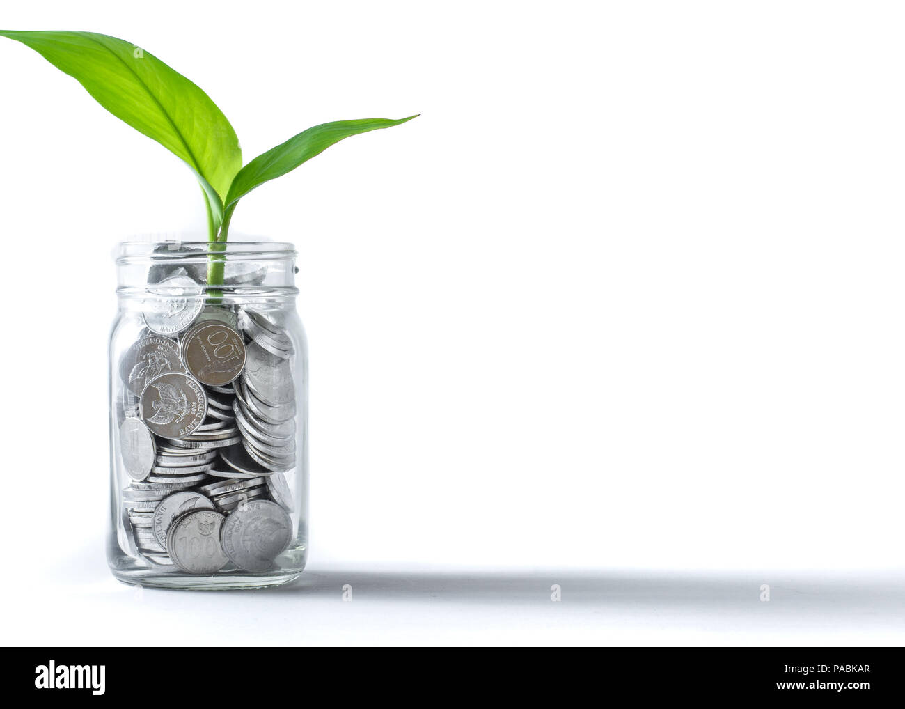 coins in a jar with plant growing suggests investment, wealth, savings & growth. - Stock Image