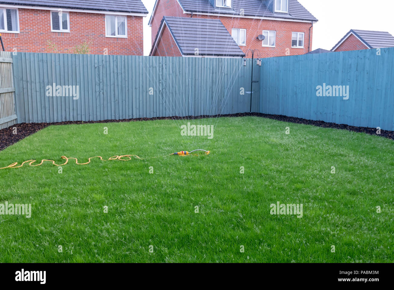 Sprinkler attached to a yellow hose being used to water a newly laid grass lawn on a new housing development - Stock Image