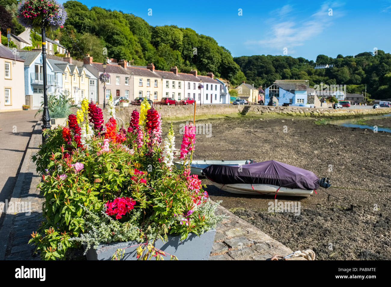 Fishguard lower town harbour at low tide, Pembrokeshire, West Wales - Stock Image