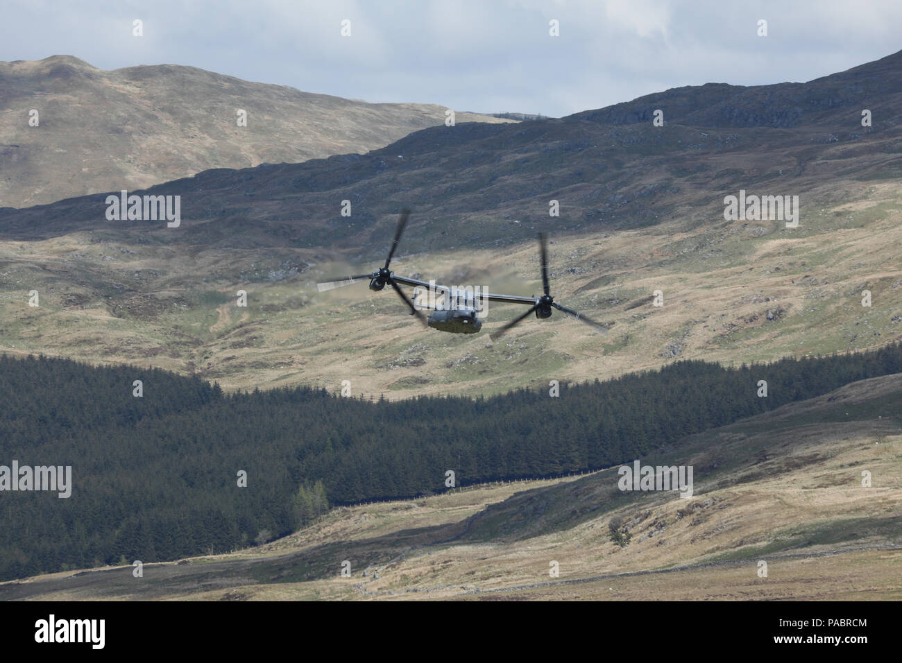 A US Air Force CV-22 Osprey tiltrotor aircraft seen on a low-level flight in the 'Mach Loop' training area, west Wales, United Kingdom. - Stock Image