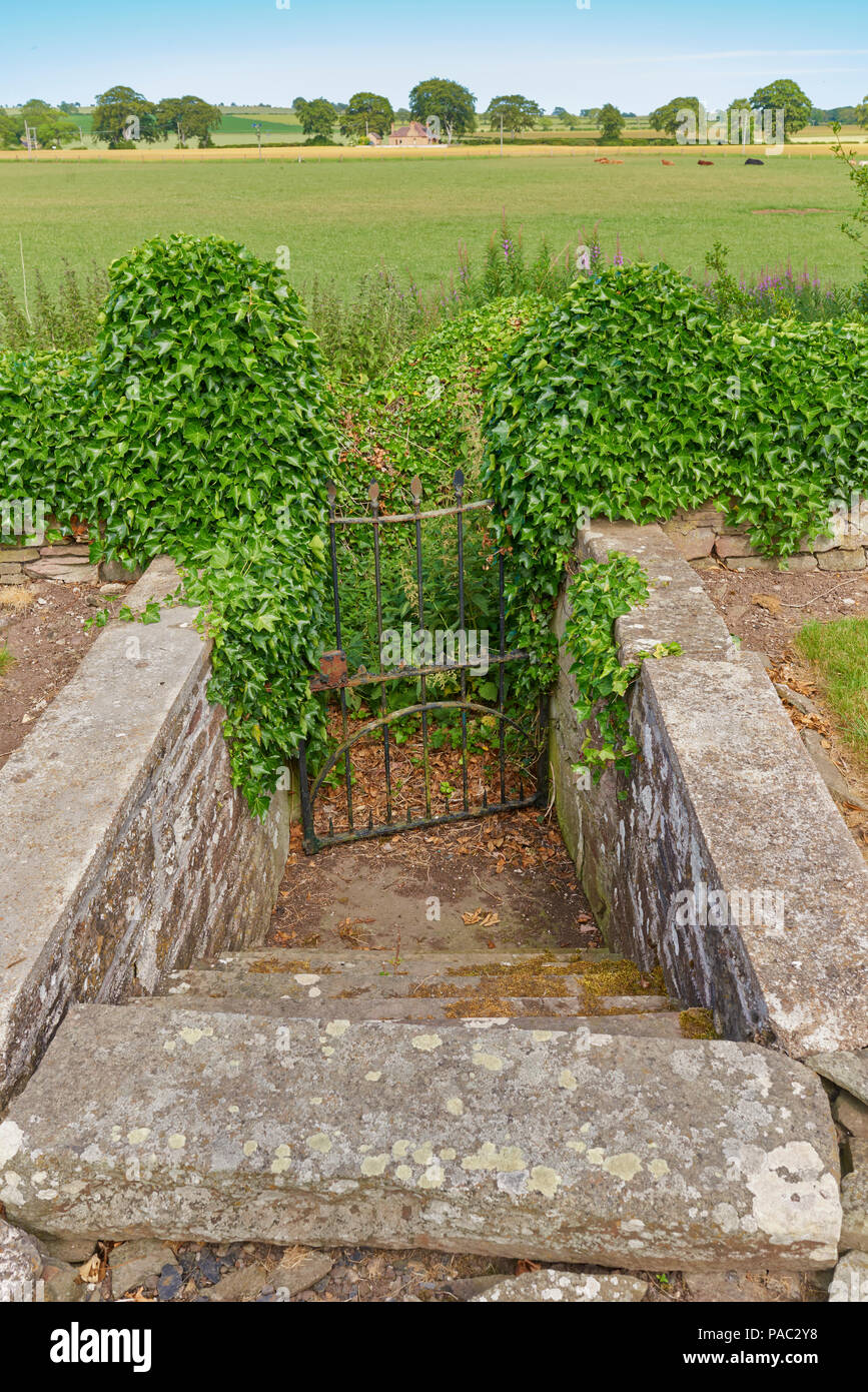 Hidden Steps leading from the Graveyard at Kinnell Church to an old path no longer used within the surrounding Farmland, Angus, Scotland. - Stock Image