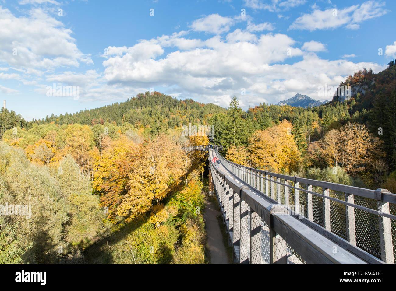 Treetop walk over the autumn forest at Forest Experience Centre Ziegelwiesen, Füssen, Bavaria, Germany Stock Photo