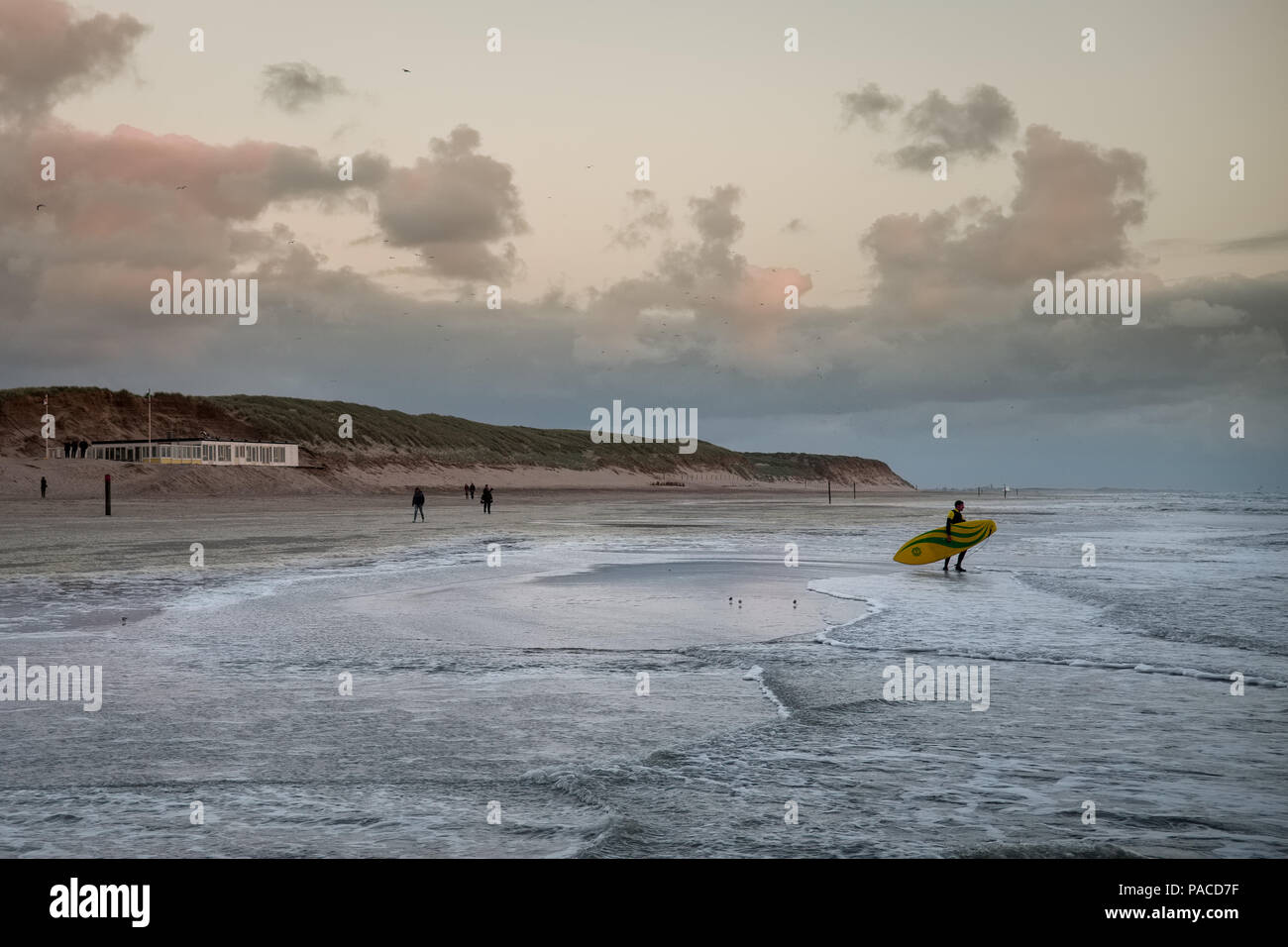 A surfer on a beach in Texel during sunset Stock Photo