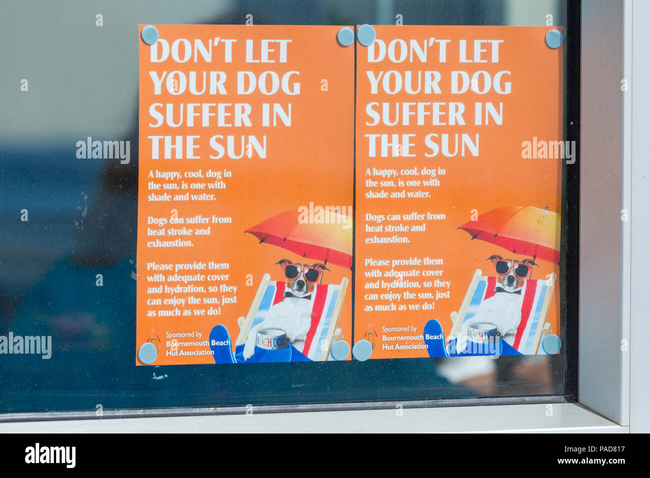 Bournemouth, Dorset, UK. 22nd July 2018. UK weather: hot and sunny at Bournemouth beaches, as sunseekers head to the seaside to soak up the sun. Don't let your dog suffer in the sun posters on display on Bournemouth Pier. Credit: Carolyn Jenkins/Alamy Live News - Stock Image