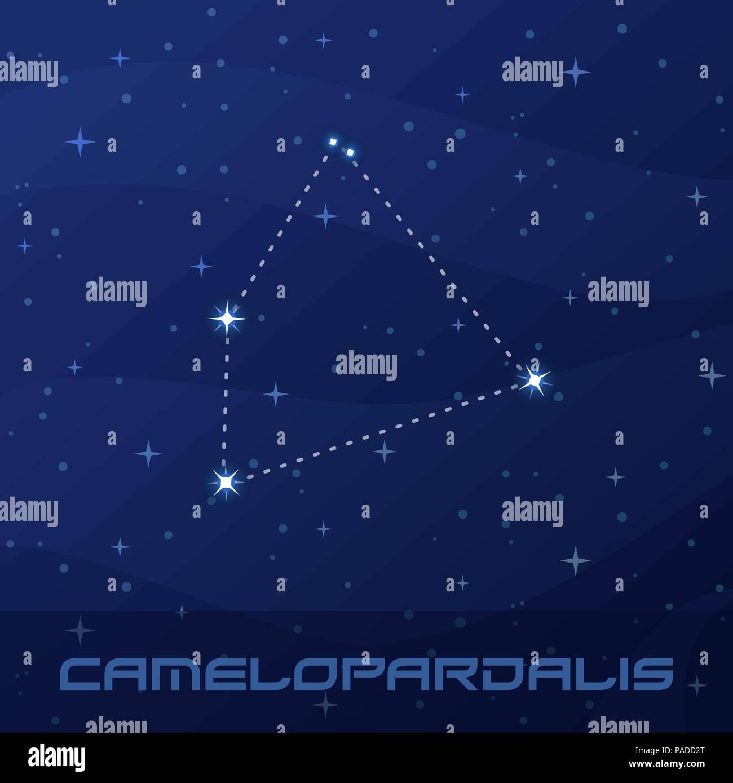 Constellation Camelopardalis, Giraffe, night star sky - Stock Vector