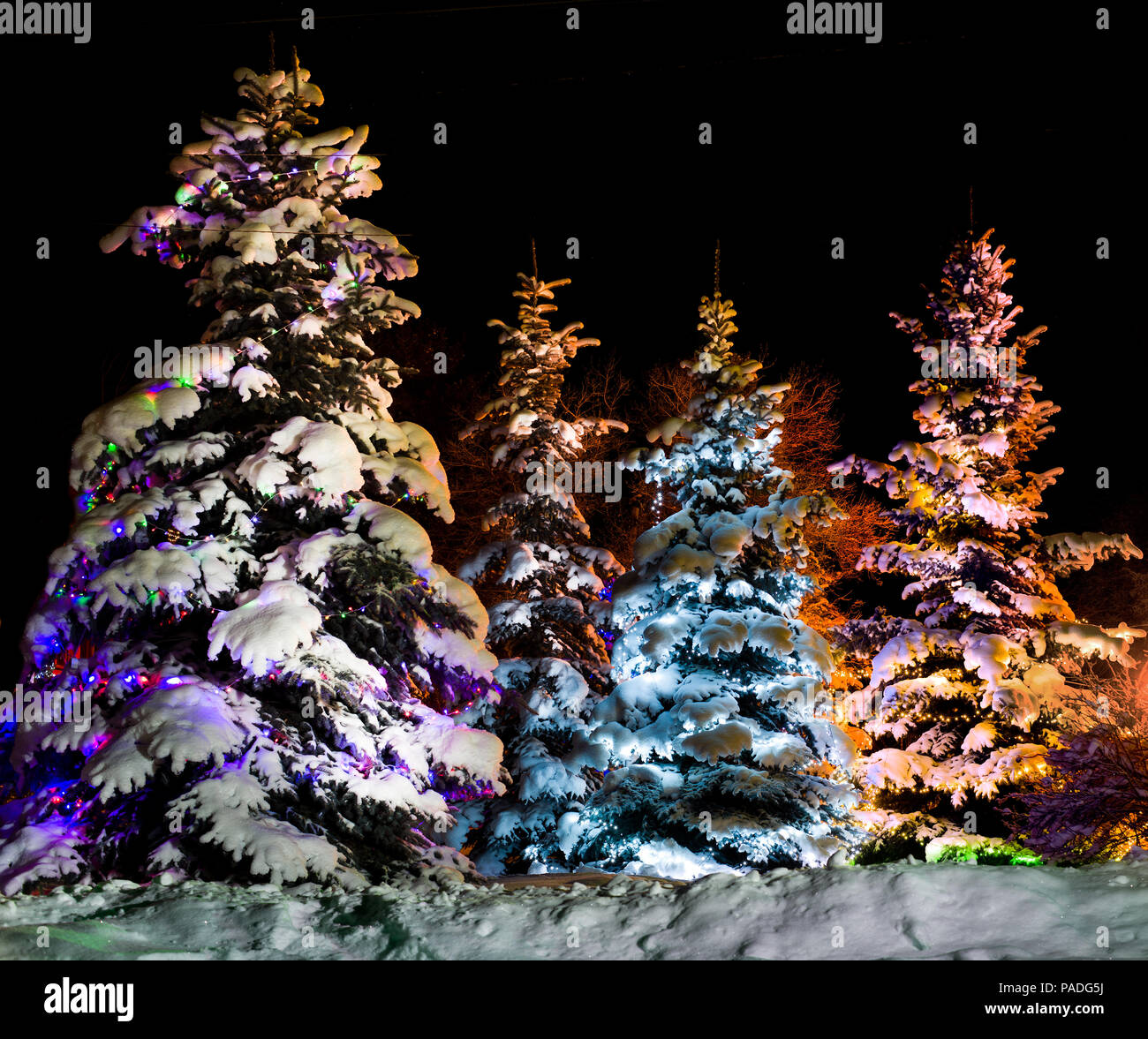 beautiful Christmas firtree with resplendent multicoloured garland onn starlit- night  background - Stock Image