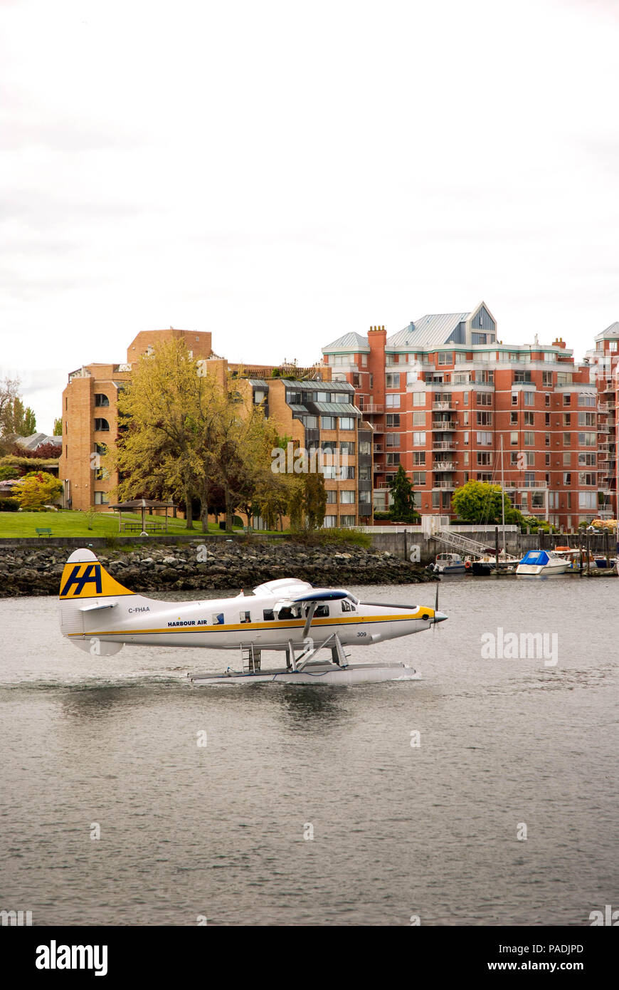 Turbo Otter float plane operated by Harbour Air taxiing to the seal plane terminal after landing in Victoria, Vancouver Island - Stock Image