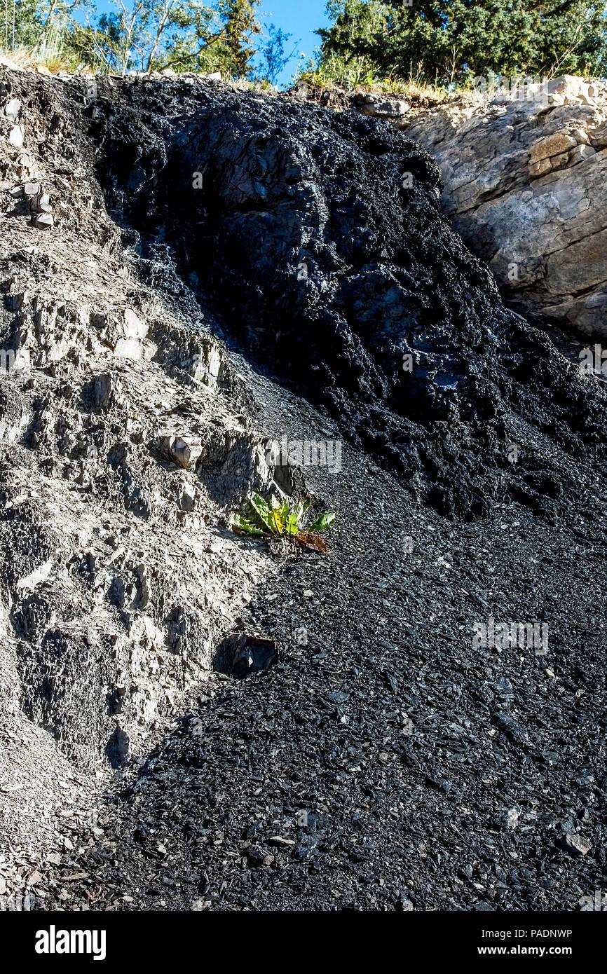 Coallout at Grande Cache Alberta Canada - Stock Image