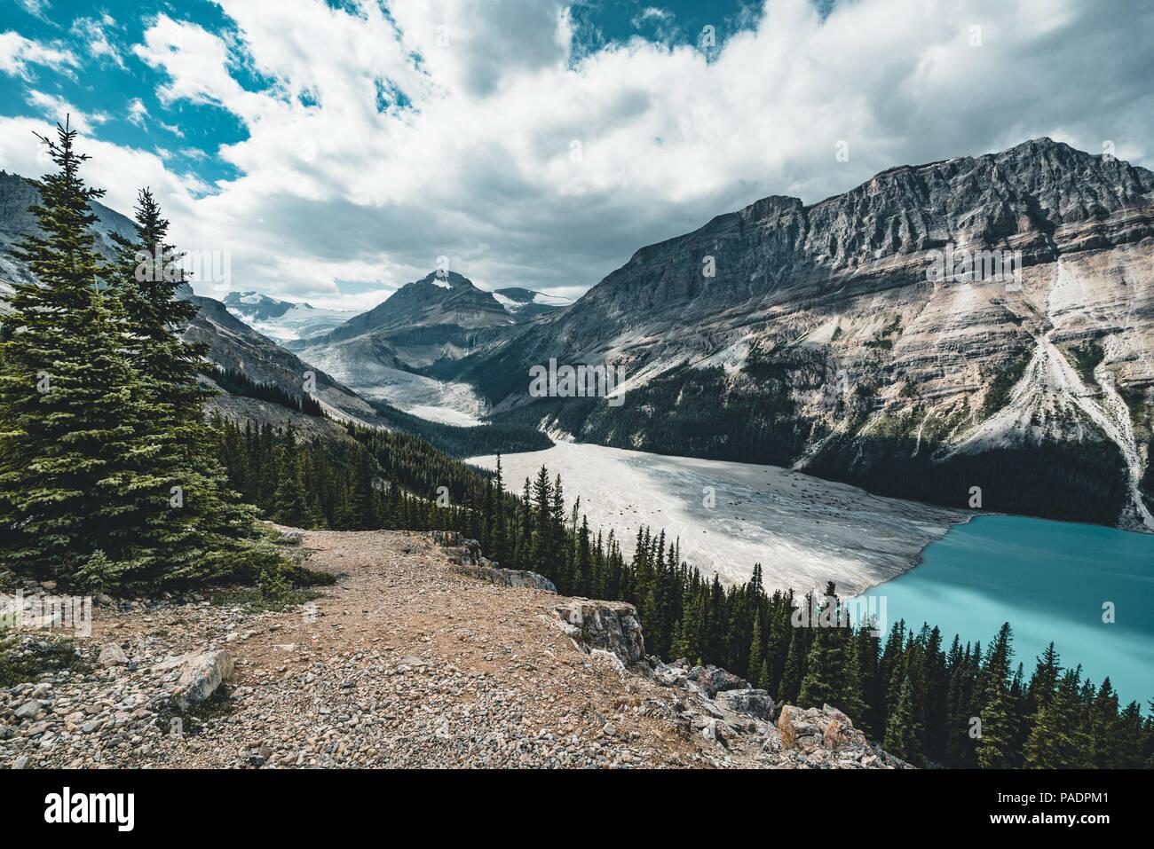 View over Peyto Lake, Banff National Park Canada - Stock Image
