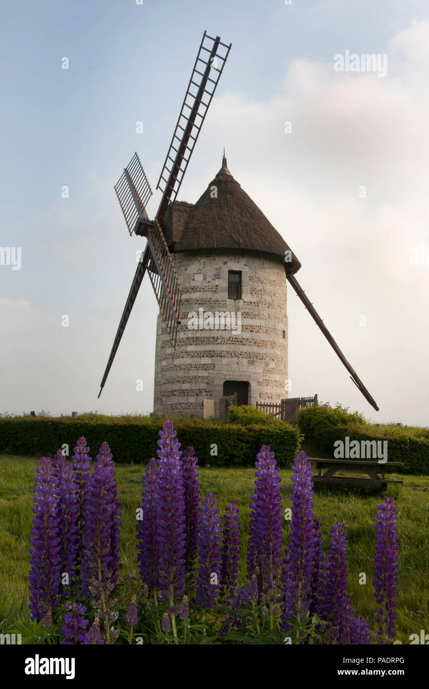 La Moulin de Pierre, a restored windmill with sails, Hauville, Eure, Haute-Normandie, Normandy, France - Stock Image