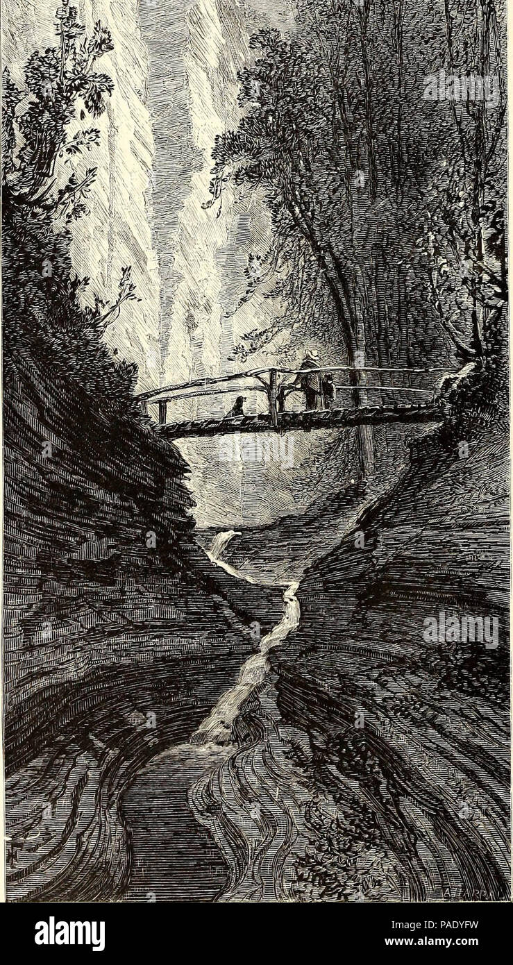 'Picturesque America; or, The land we live in. A delineation by pen and pencil of the mountains, rivers, lakes, forests, water-falls, shores, cañons, valleys, cities, and other picturesque features of our country' (1872) - Stock Image
