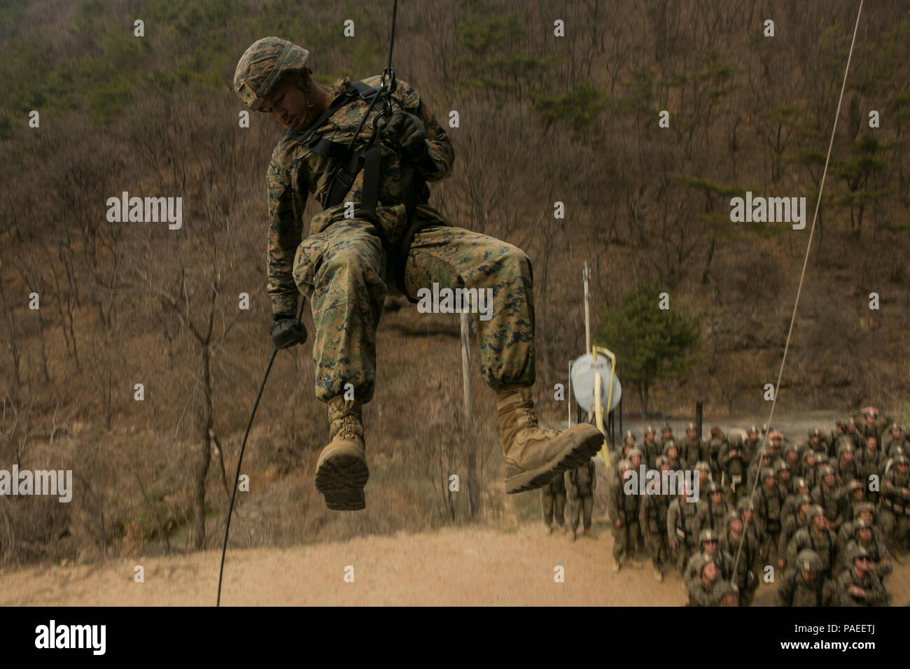 """U.S. Marine Corps Lance Cpl. Yeilen Fernandez, a rifleman with Bravo Company, 1st Battalion, 3rd Marine Regiment, also known as """"The Lava Dogs"""", practices rappelling techniques at the Republic of Korea (ROK) Marine Corps Ranger Course as a part of the Korea Marine Exchange Program (KMEP) in South Korea, March 29, 2016. KMEP is a program designed to increase interoperability and camaraderie between U.S. Marines and ROK marines. The alliance between the United States and the Republic of Korea has grown ever stronger based upon the shared interests and common values of both nations. Lance Cpl. Fe - Stock Image"""